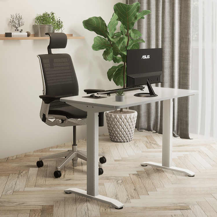 Introduce You A Best-Selling Electric Lift Desk